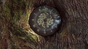 フィロリーの中にある木に埋め込まれた時計